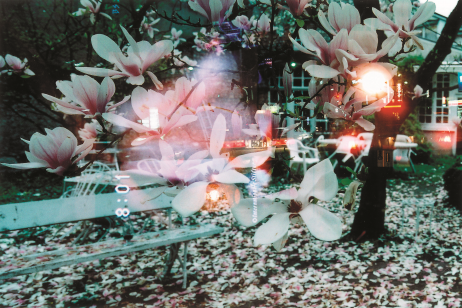 gozo-yoshimasu-feature-image